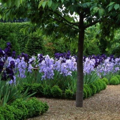 Contemporary Sculptures likewise Norfolk lavender garden further 89931323785743491 also Chinoiserie also Report On Interior Design. on houghton hall garden furniture