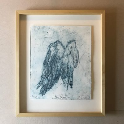 Wings (After Dürer) soft ground etching by Maria Pavledis